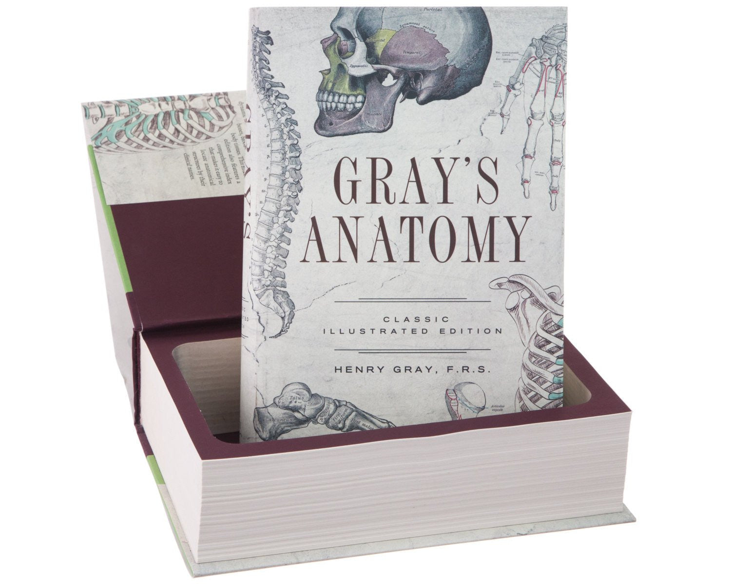 Gray\'s Anatomy by Henry Gray - BookRooks