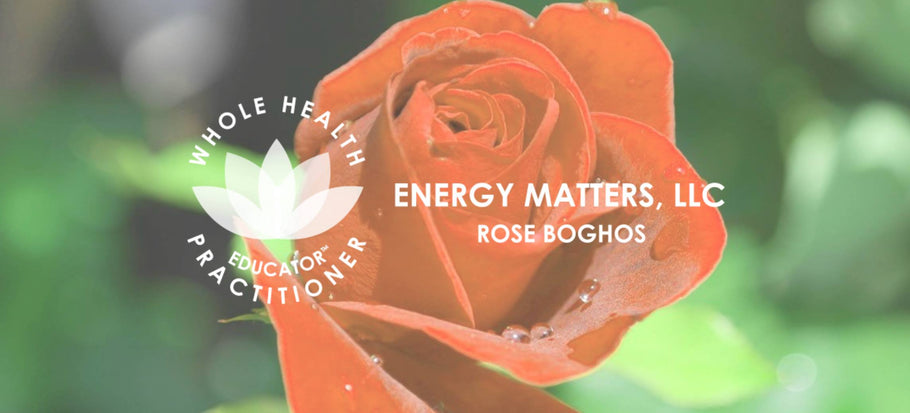 February 2019 Newsletter -- Energy Matters, LLC.