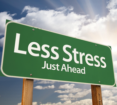 Stress In Your Cells by Rose Boghos of Energy Matters, LLC.