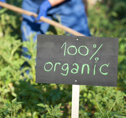 Is Certified Organic Good Enough For You And Your Family? by Rose Boghos of Energy Matters LLC