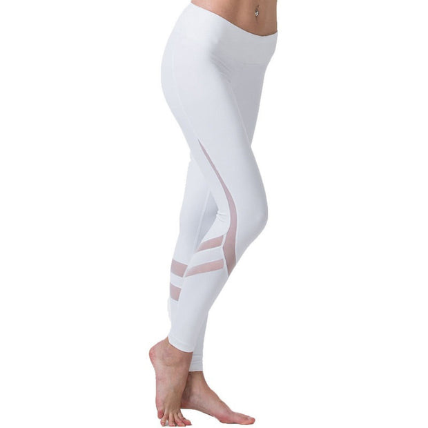 Tight Mesh Yoga Pants (4 Colors)