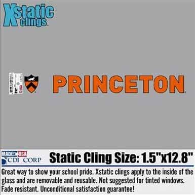 Princeton Shadow Block Shield Static Cling/Sticker (Inside)