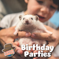 Custom Combo Birthday Party