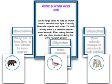 Animals In Winter Research Project