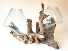 Double Root Glass Bowl