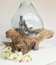Teak Root/Glass Vase (Large)