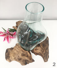 Teak Root/Glass Vase (Medium)