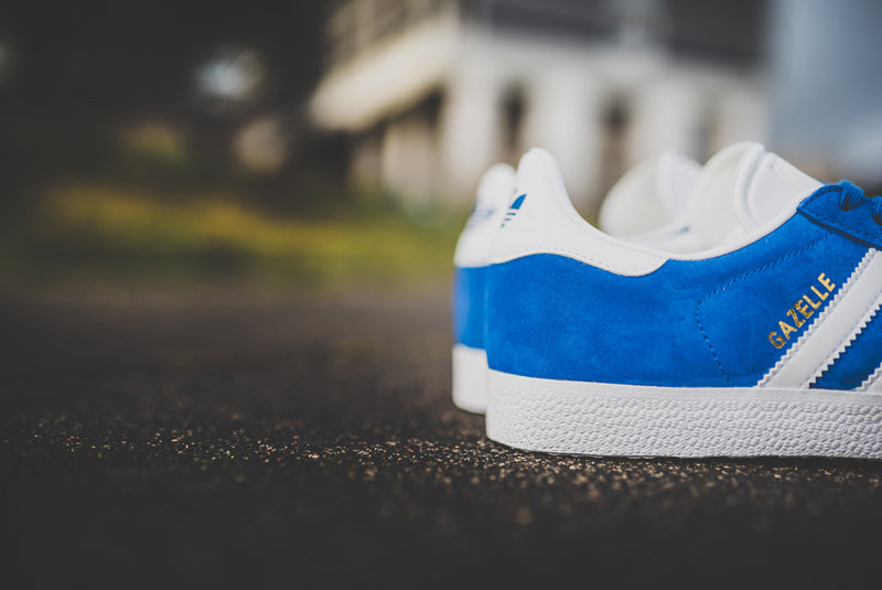 adidas-gazelle-collegiate-royal-s76227-04-800pix