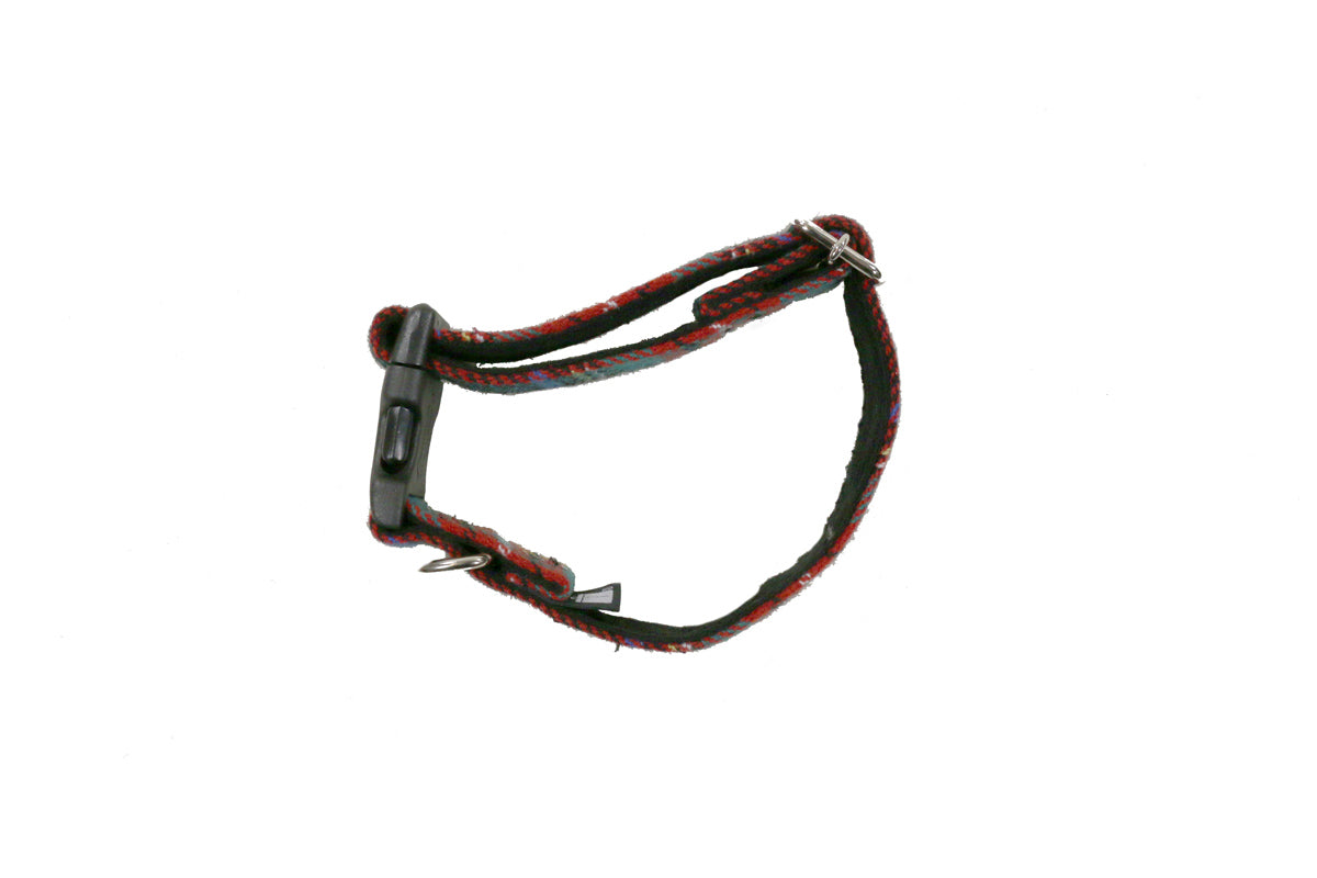 Head Porter Lesson Dog Collar (M)