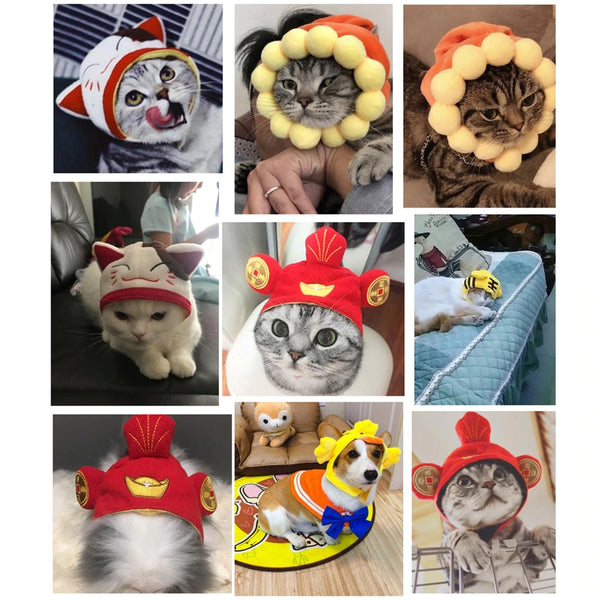 Decorative Hats for Pets