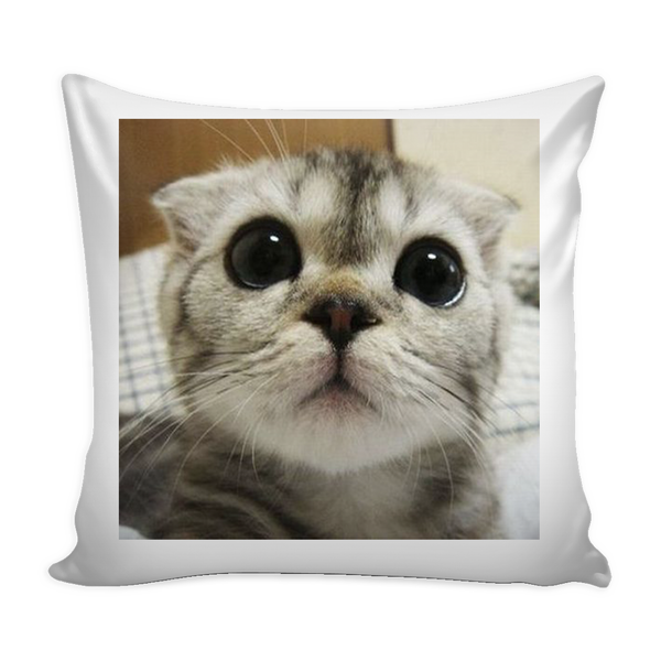 Big Eyes Cat Pillow Cover