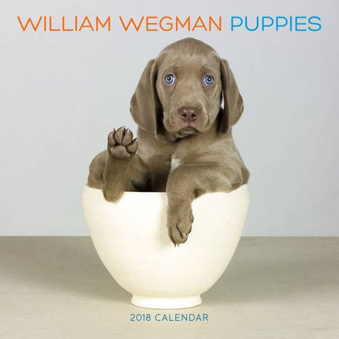 William Wegman Puppies 2018 Wall Calendar