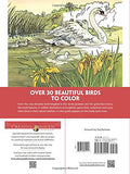 Creative Haven Beautiful Birds Coloring Book (Adult Coloring)