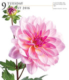 Flowers Page-A-Day Gallery Calendar 2016