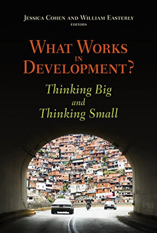 What Works in Development?: Thinking Big and Thinking Small