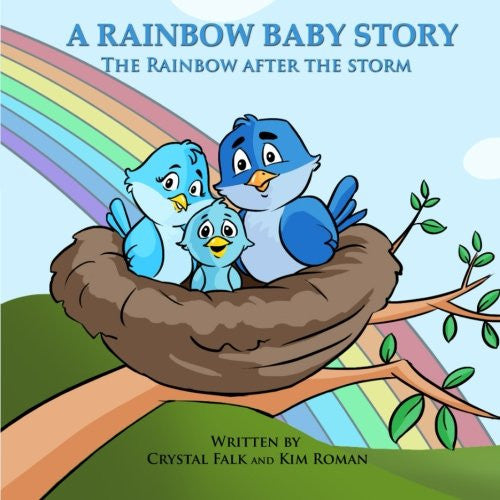 A Rainbow Baby Story: The Rainbow After the Storm (Explain It To Me!) (Volume 2)