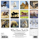What Horses Teach Us 2018 Wall Calendar