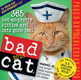 Bad Cat Page-A-Day Calendar 2018