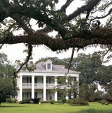 Vestiges of Grandeur: Plantations of Louisiana's River Road