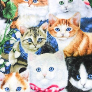 Kitten Fancy Anti Pill Animal Theme Fleece Fabric