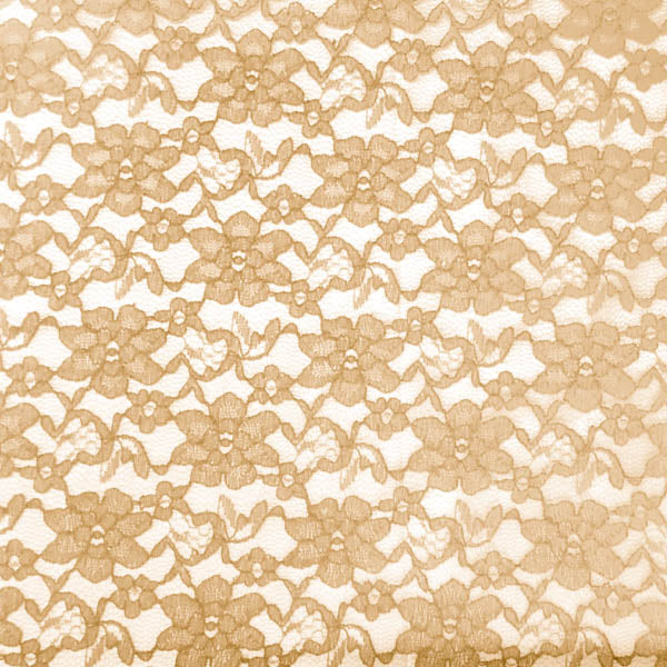 Gold Raschel Lace Fabric