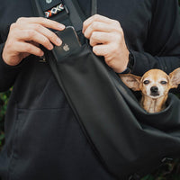Putting a phone into the phone pocket of the dog holder with a little dog sticking his head out