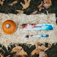 Lifestyle image of Breathe and it's box next to a tiny pumpkin on a hay stack