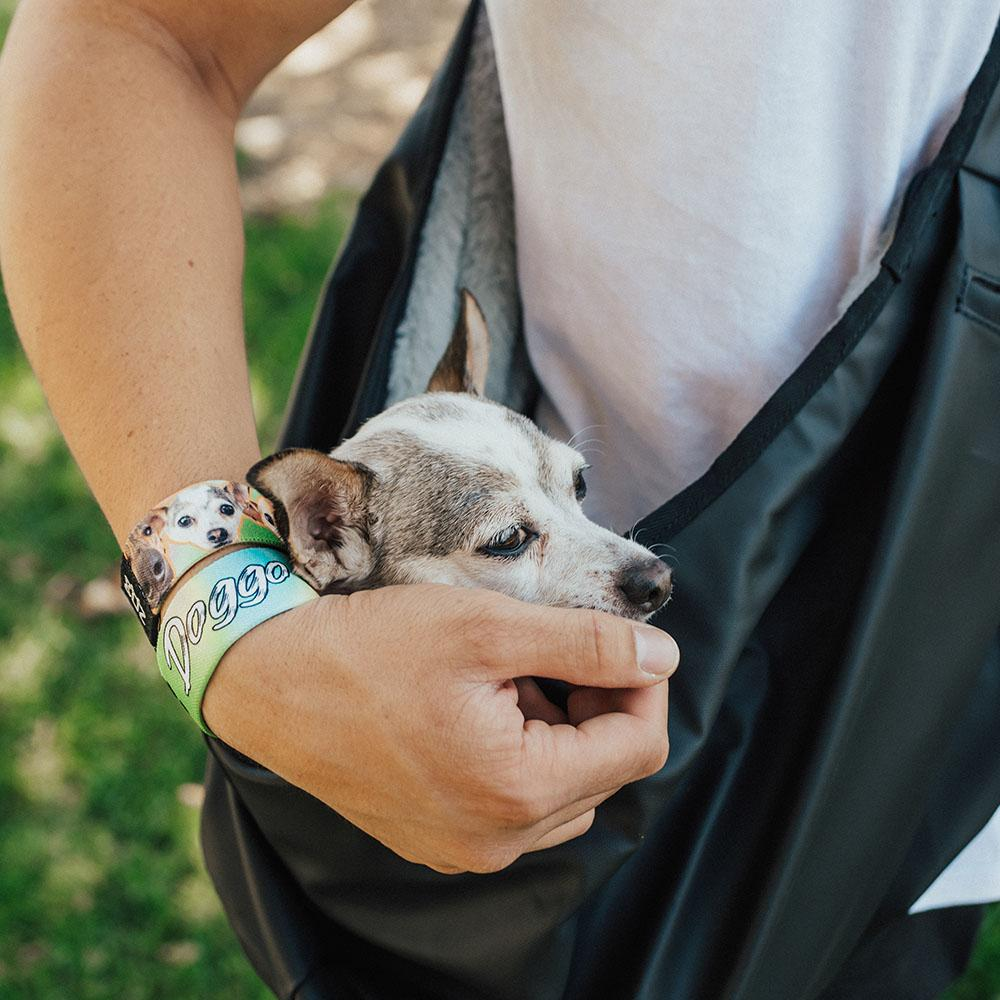 Lifestyle image of white and light brown chihuahua in Doggo carrying bag and arm cradling head of the dog has 2 doggo straps on wrist