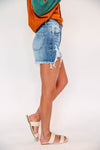 Button Up Cardi Extended Sizes-Cabernet
