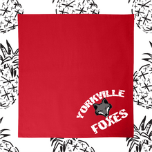 Load image into Gallery viewer, Yokville Foxes Bleacher Blankets