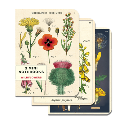 NOTEBOOK SET CH / WILDFLOWERS