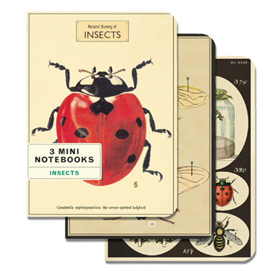 NOTEBOOK SET CH / INSECTS