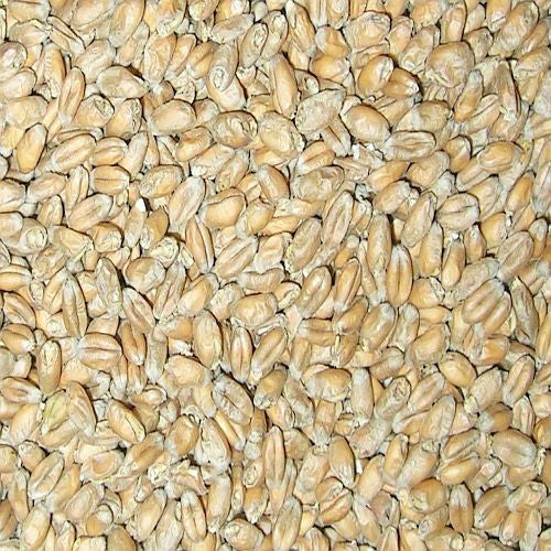 White Wheat Malt 10LB