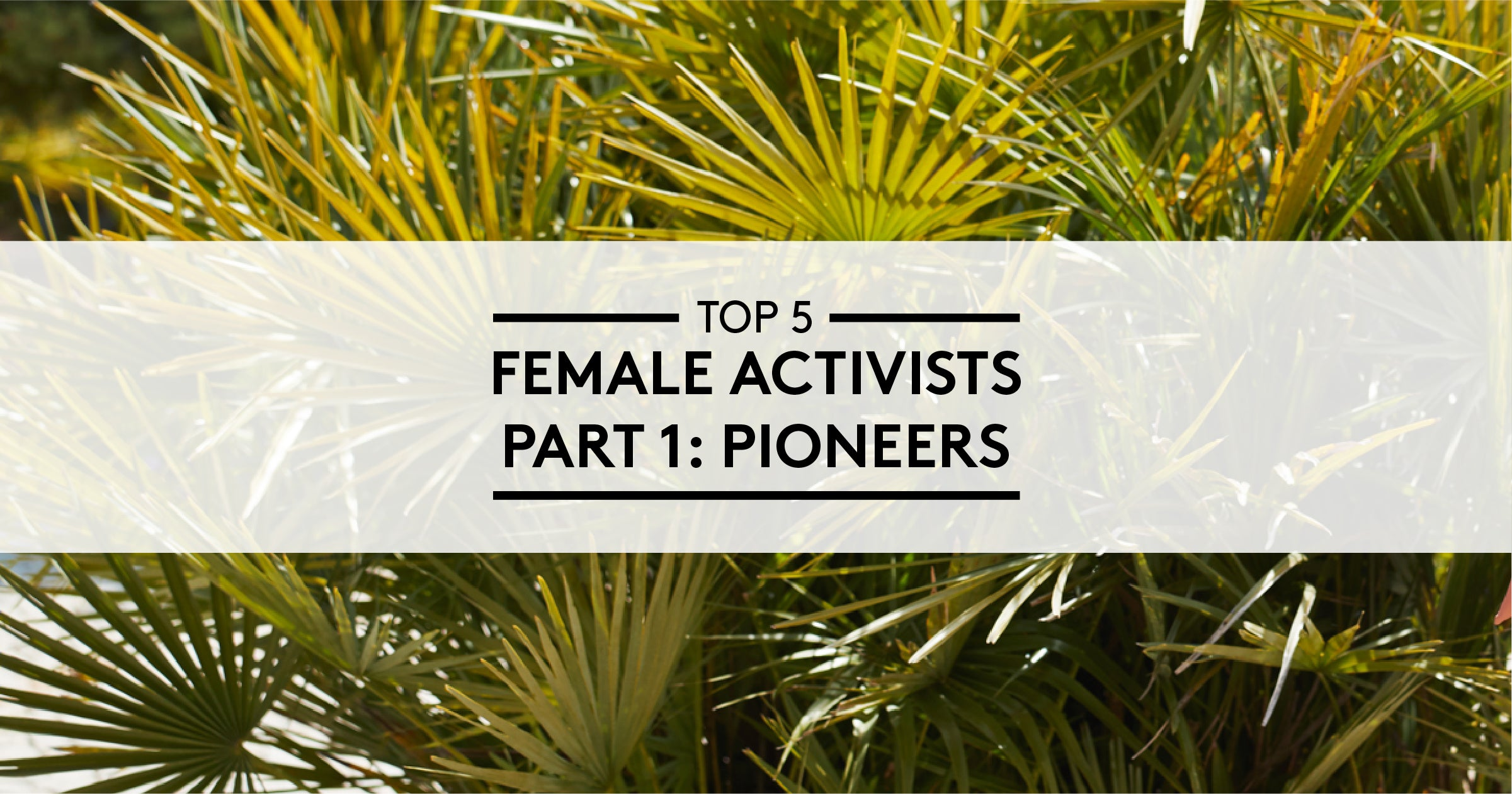 5 Female Activists - Part 1: Pioneers