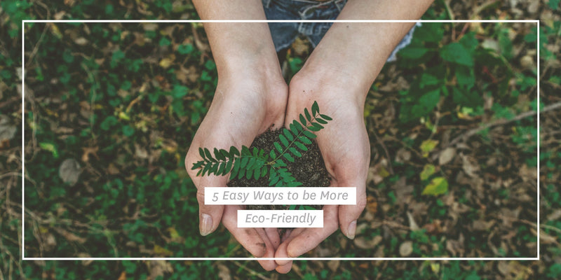 5 Easy Ways to be More Eco-Friendly