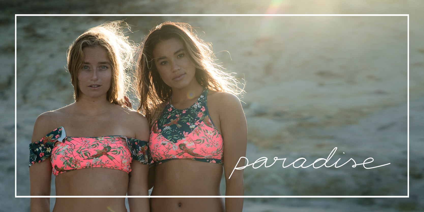 Discover: PARADISE