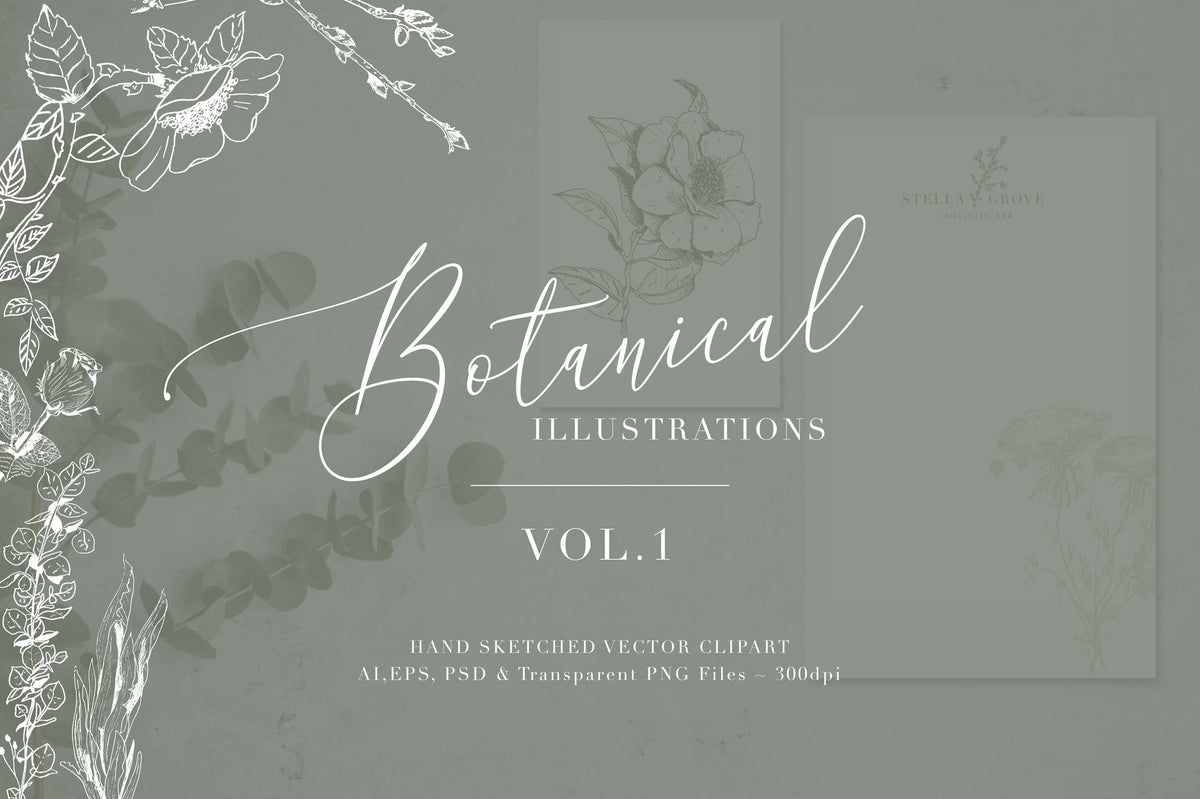 Botanical Illustrations Vol. One
