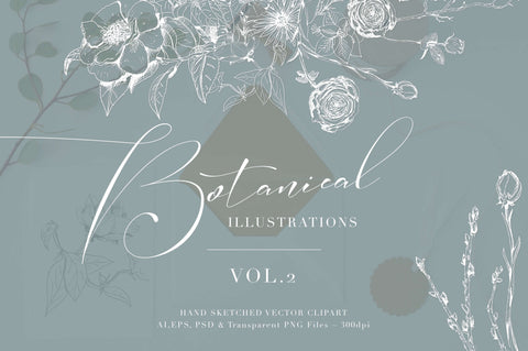 Botanical Illustrations Vol. Two