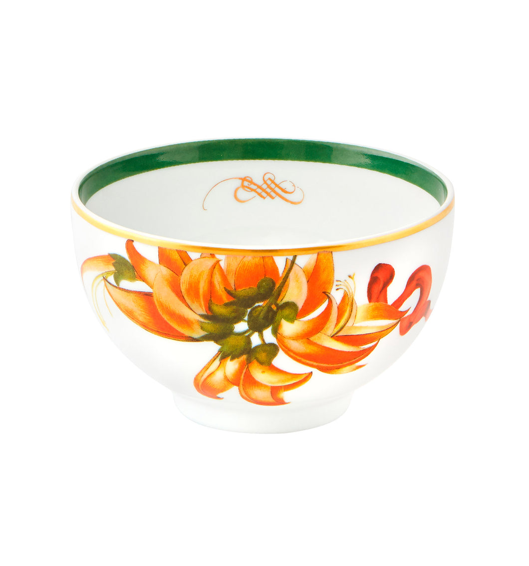 Vista Alegre Amazonia Porcelain Rice Bowl - Set of 4