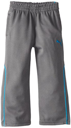 Puma Toddlers Training Pant 2 Lounge Pants Sweatpants - Quiet Shade