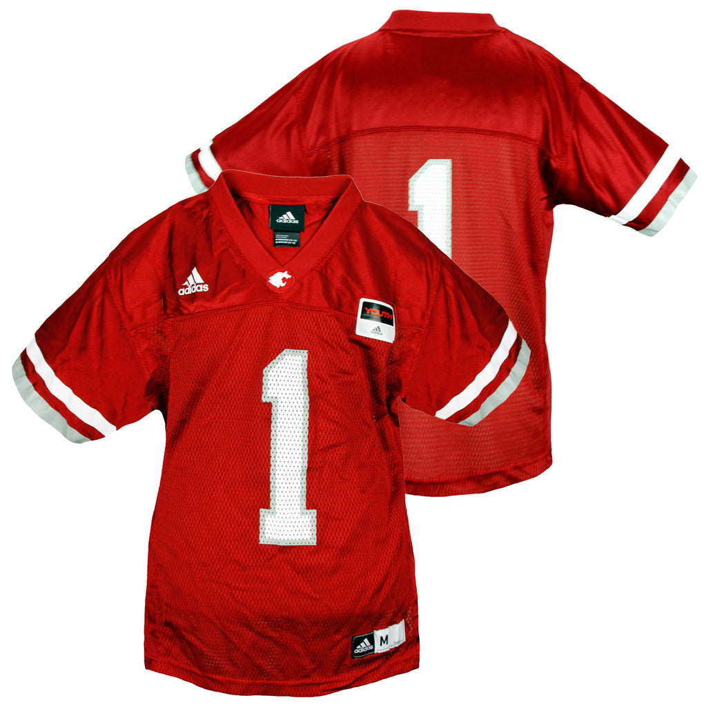best website 2a810 123aa Adidas NCAA College Youth Washington State Cougars Football Jersey, Red
