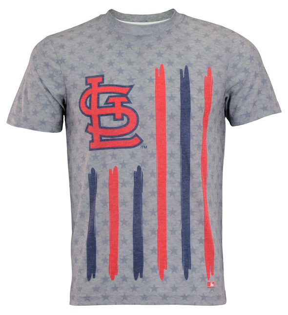 Forever Collectibles MLB Men's st. Louis Cardinals Big Logo Flag Tee