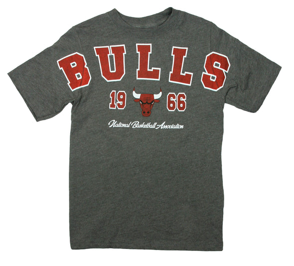 NBA Basketball Youth Boys / Little Boys Kids Chicago Bulls Play Dri Tee T-Shirt, Grey