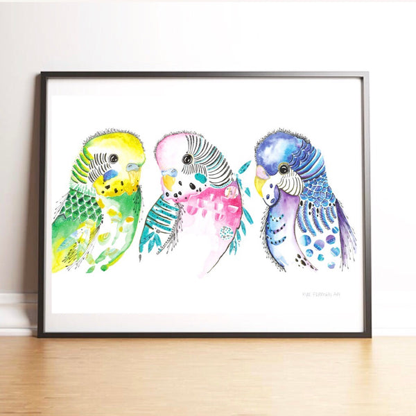 BUDGIES ALL IN ONE