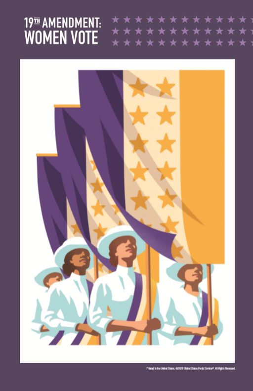 19th Amendment Mini Poster