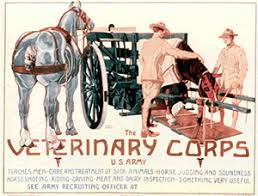 Veterinary Corps Poster 217