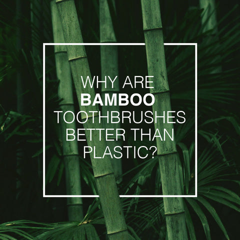 why are bamboo toothbrushes better than plastic