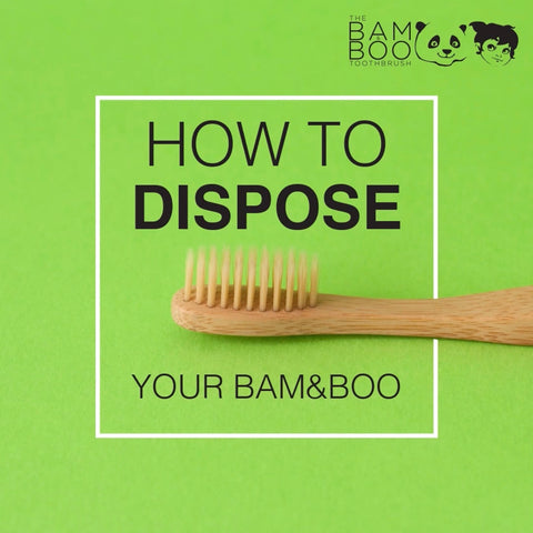 How to dispose your bamboo toothbrush