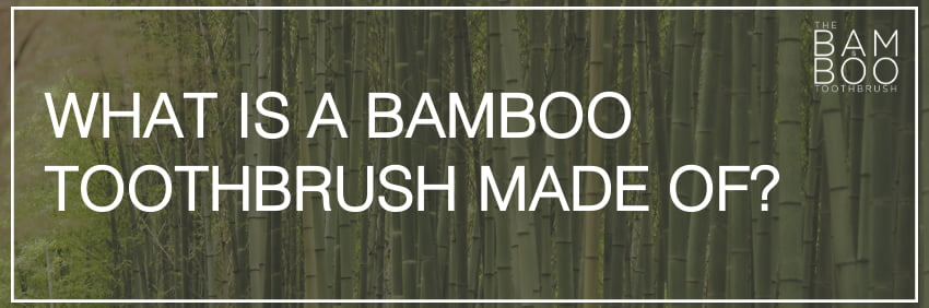 What is a bamboo toothbrush made of?