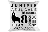 Birth Announcement Llama Pillow